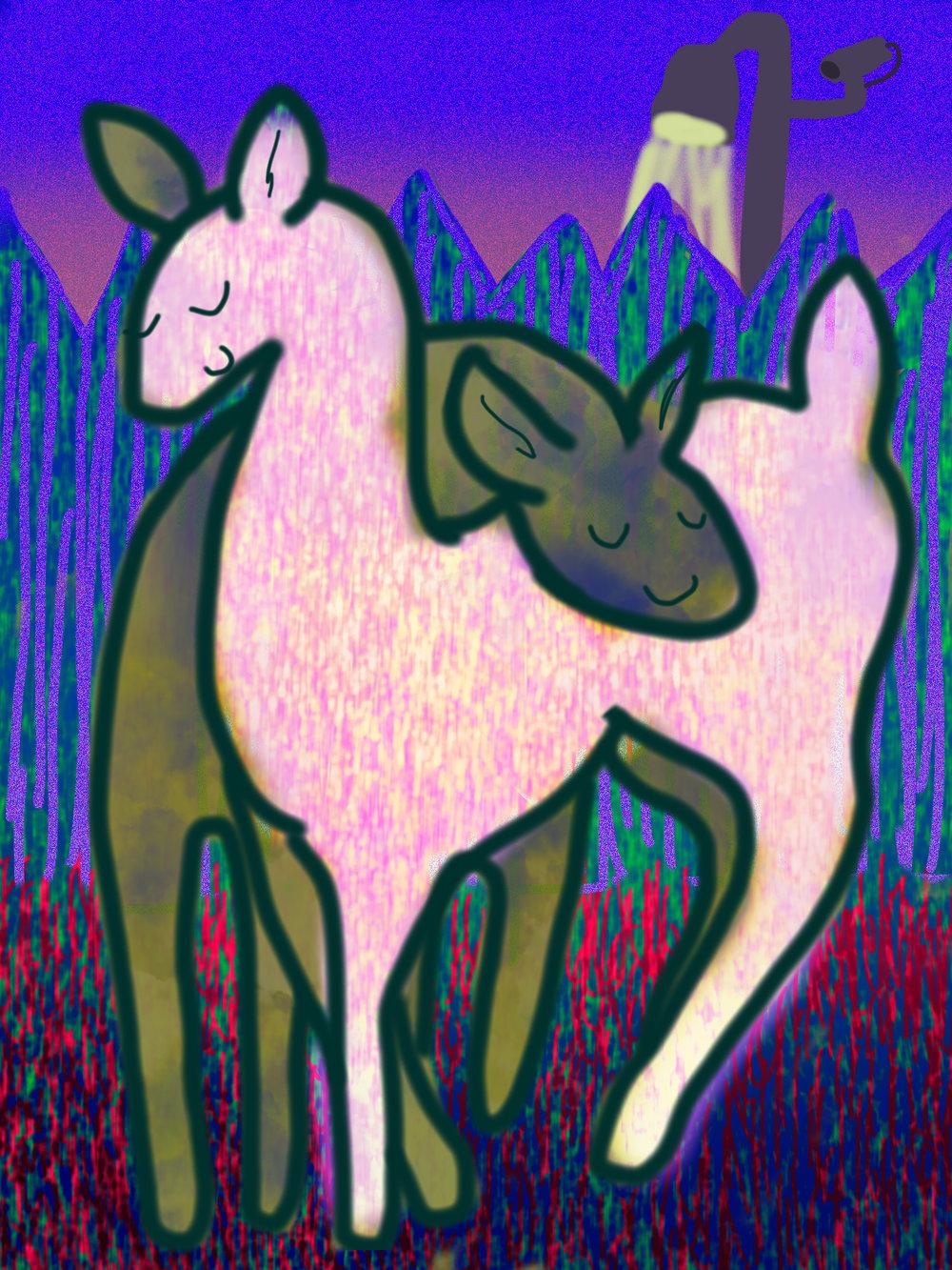 Jane-deers.jpg