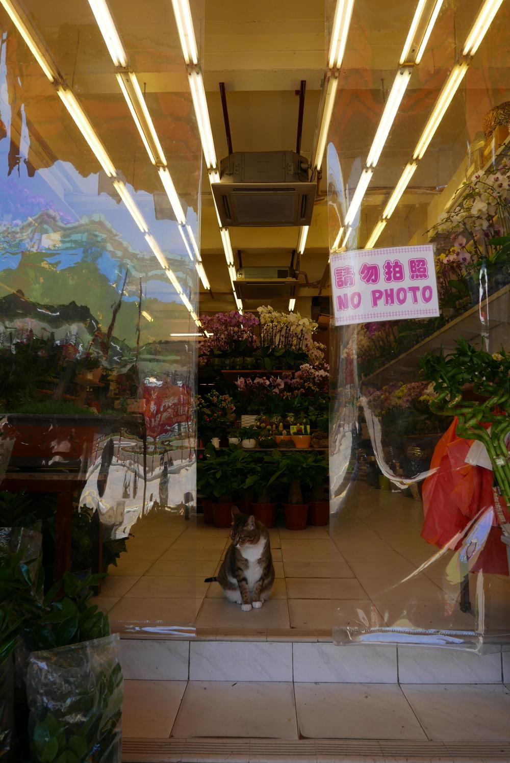 The Flower Market gatekeeper.