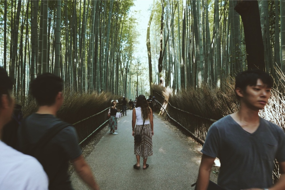 Wandering through the Bamboo Grove in Arashiyama.