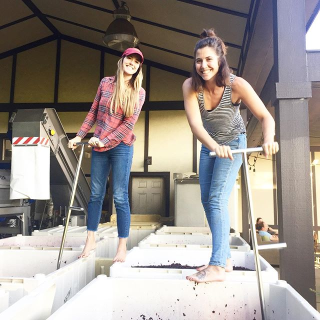 She may not *technically* be a winemaker, but our vote for #womanwinemakerwednesday goes to @sarahb_walsh - she prunes, she mows, she picks, she ferments, she blends, and she bottles.  Most importantly, Sarah has always been a critical and crucial voice as we establish our winemaking style and our approach.  Plus, who would you rather have a glass with?