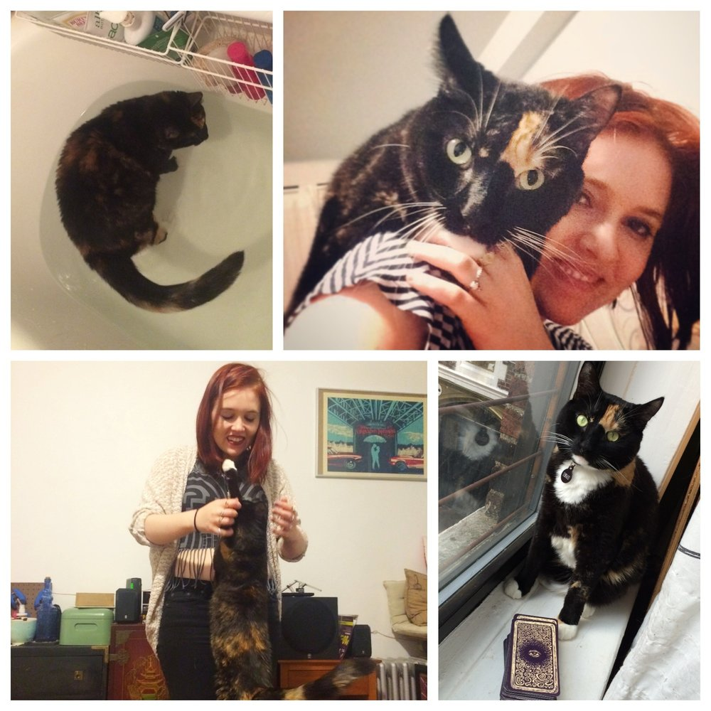A tale of voluntary bath time, tarot cards, and shoulder rides.