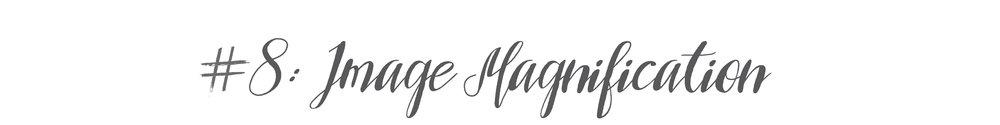 8-image-magnification-imag.jpg