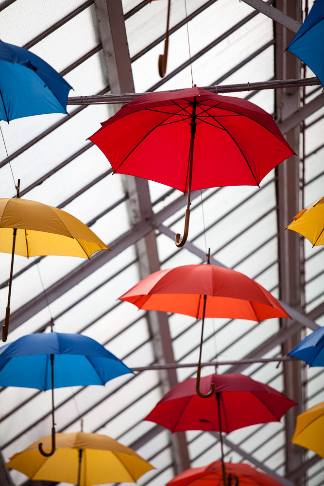 Makinson Umbrellas_29 03 2018_4_©Matthew Nichol Photography.jpg