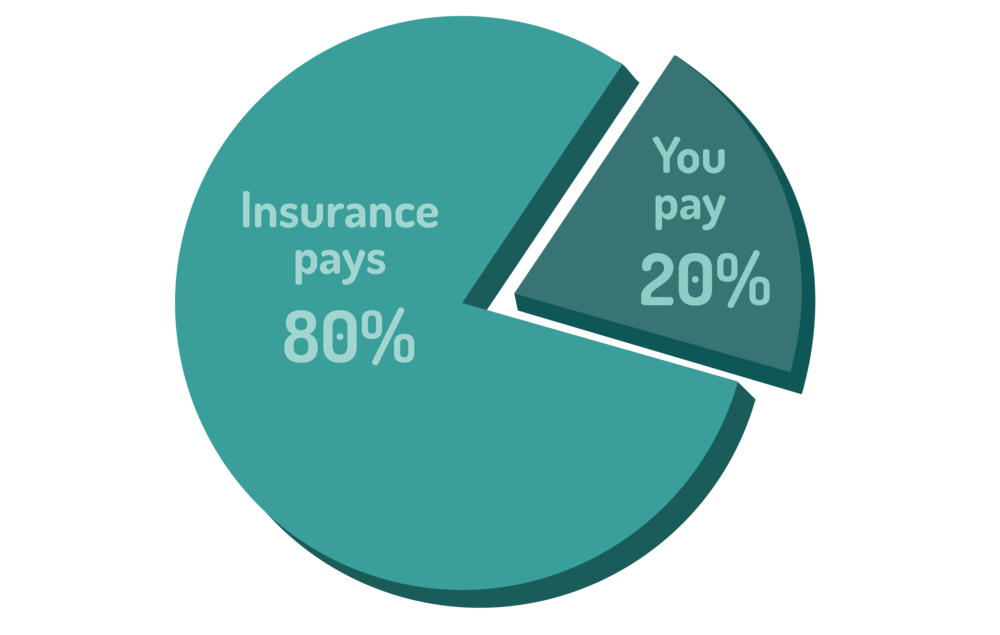 "graphic of a pie chart showing an example of how ""co-insurance"" works"