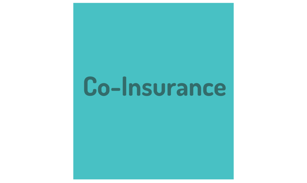 "graphic of term: ""Co-Insurance"""