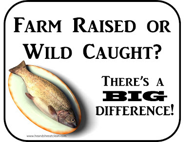 how to tell if fish is wild caught