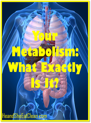 Your+Metabolism+What+Exactly+Is+It_He+and+She+Eat+Clean.png