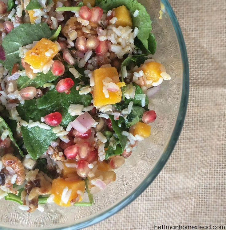 Pomegranate, Butternut Squash, & Wild Rice Power Salad | Hettman Homestead