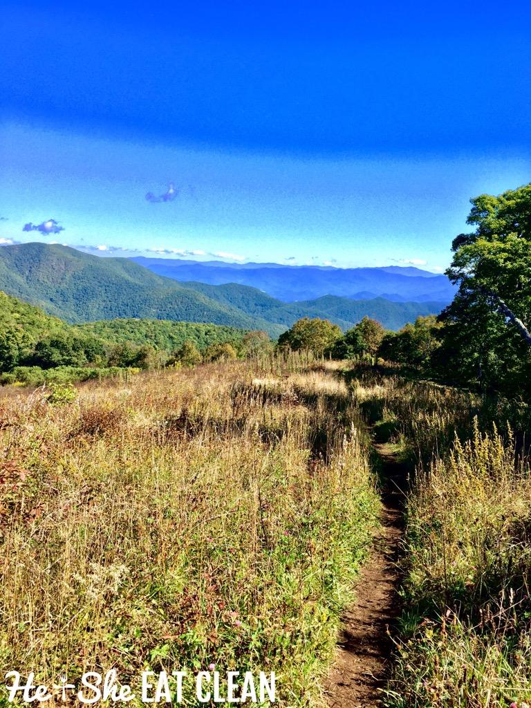 Hiking Siler Bald near Franklin, NC