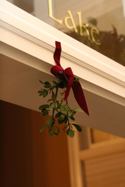 Winter Wedding Decoration - Christmas Mistletoe | He and She Eat Clean