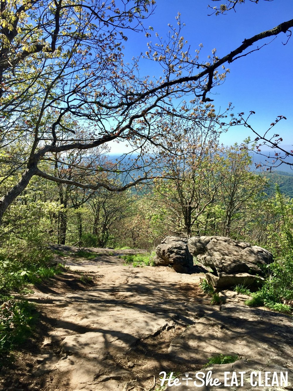 Hiking Blood Mountain on the Appalachian Trail | He and She Eat Clean