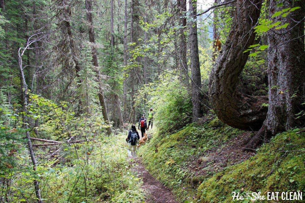 Hiking in Kootenay National Park, Canada