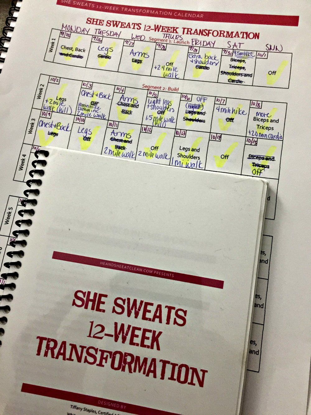 She Sweats 12-Week Transformation