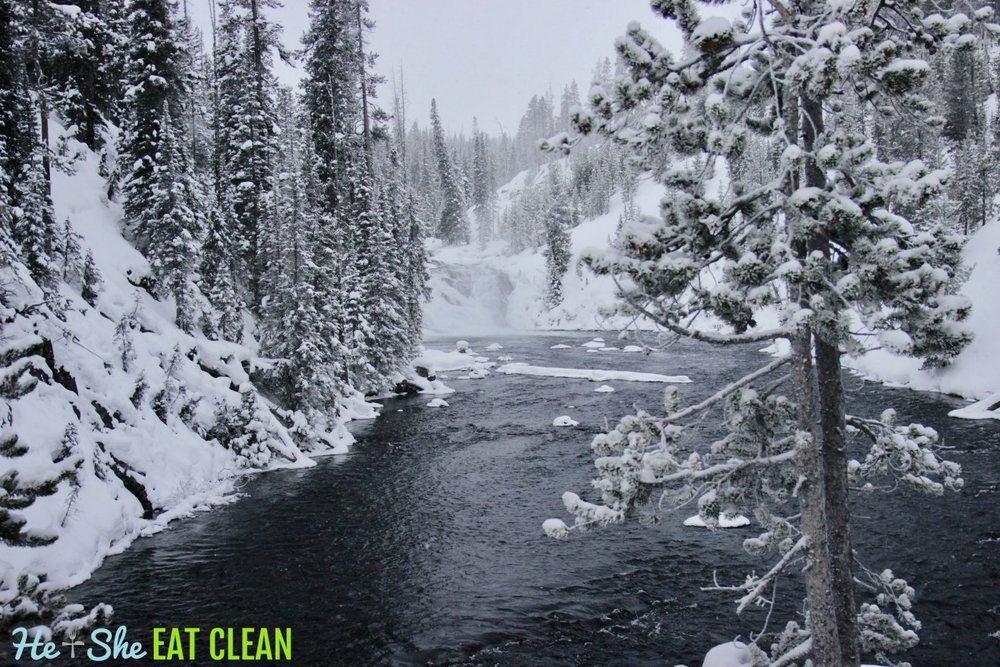 Snowmobiling through Yellowstone National Park in Jackson, Wyoming