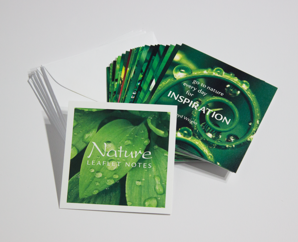 NATURE LEAFLET NOTES – $18   Our tiny Nature LeafLet Notes c elebrate the lush of nature and all it has to offer. Share one with someone who makes this world a better place.
