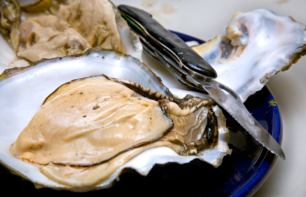 Pacific Oysters with my knife on a blue plate.