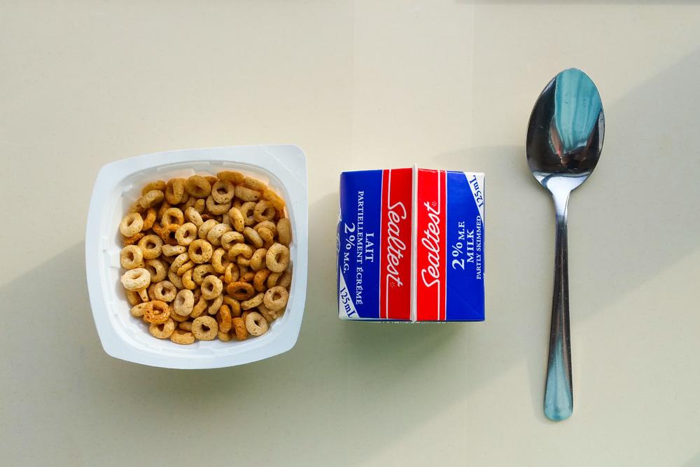 cheeriosmilk 08.53.43.jpg
