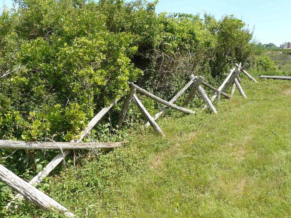 House_Island_July_2012_12_Graves.JPG