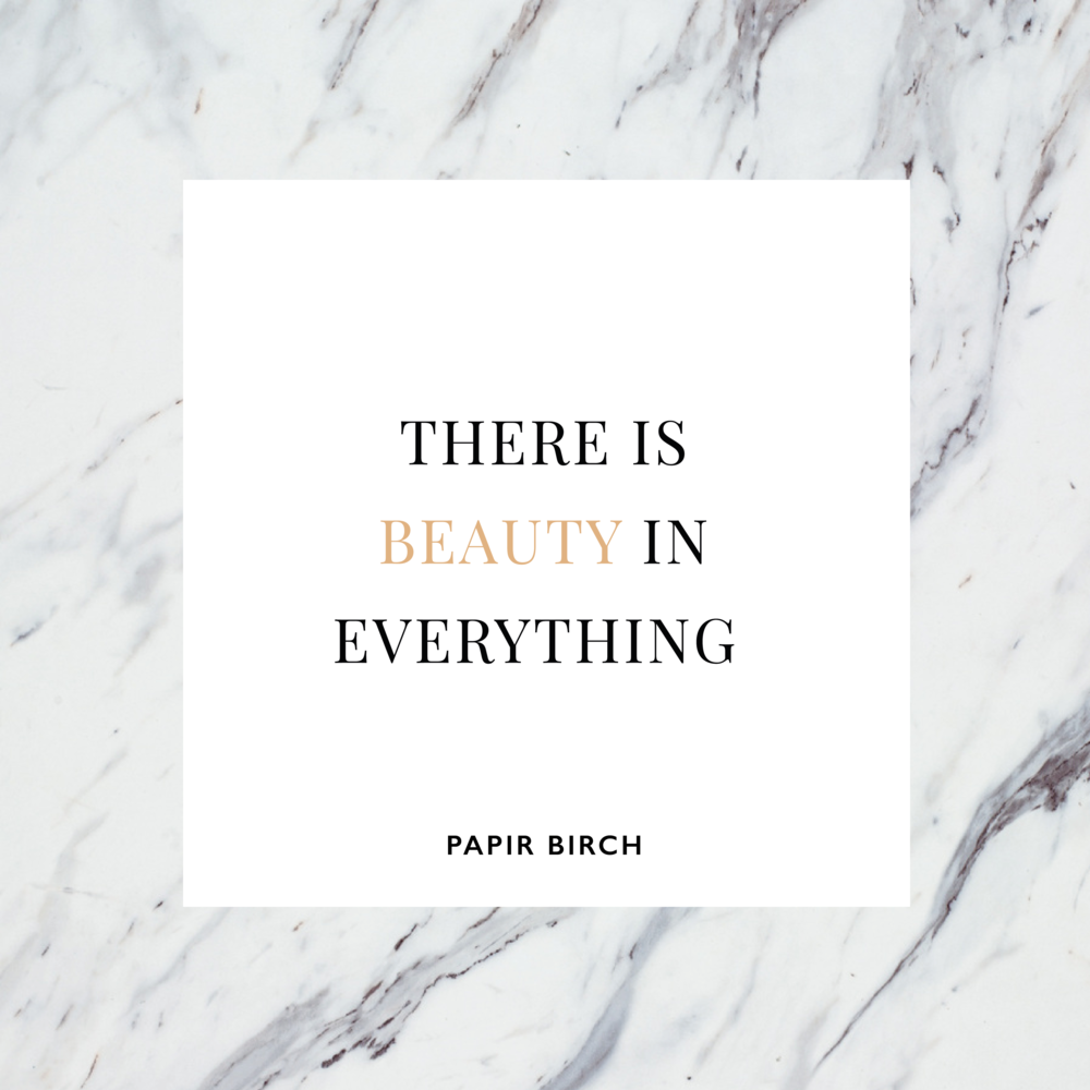 PapirBirch-Social-Quotes-BeautyInEverything-0116-01.png