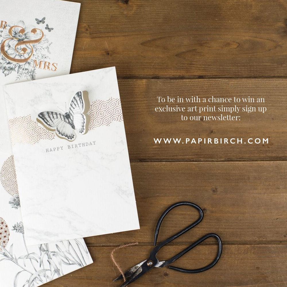 Papir Birch - Exclusive Chance-0117.png