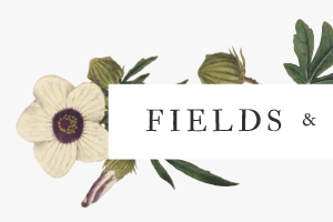 fields & cloth.png