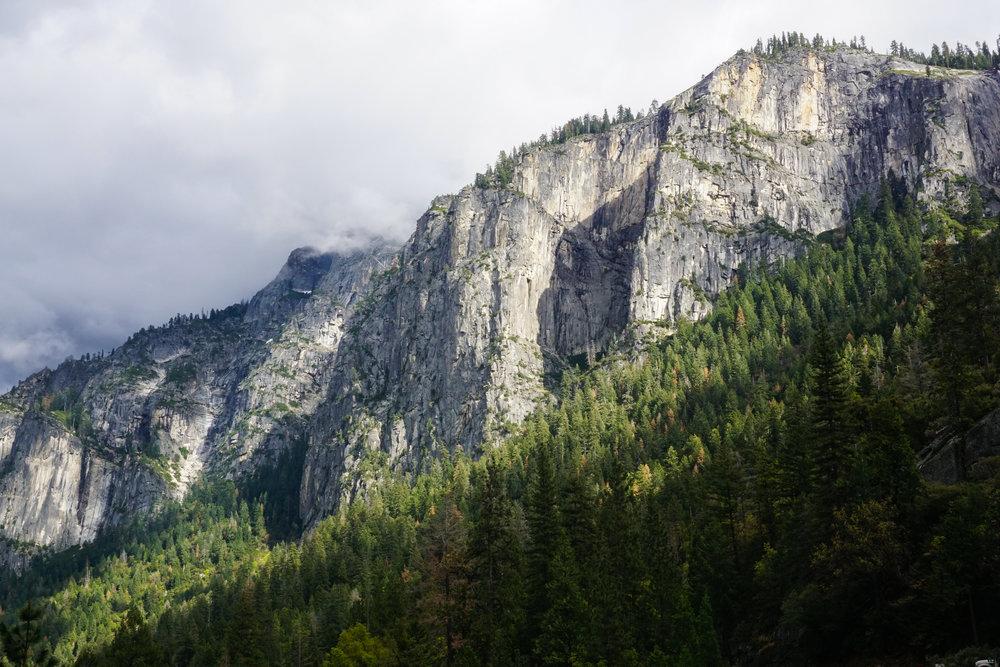 Nature's Angles  Yosemtie - 2016
