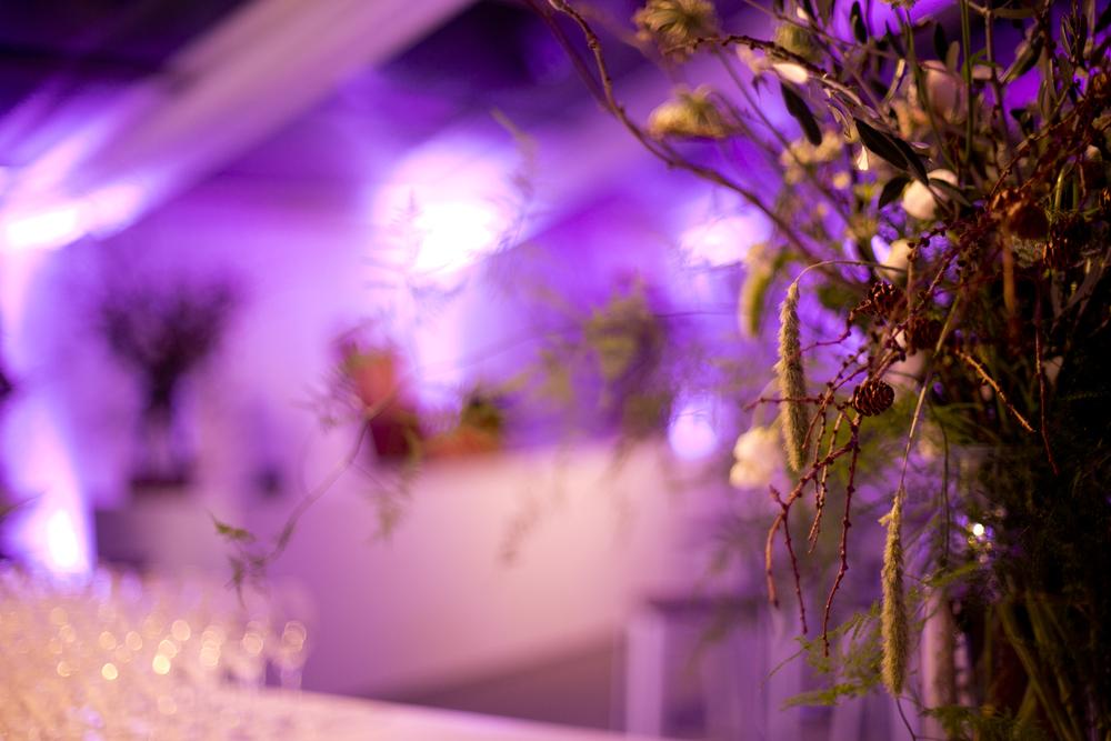 Lighting- florals_3.jpg