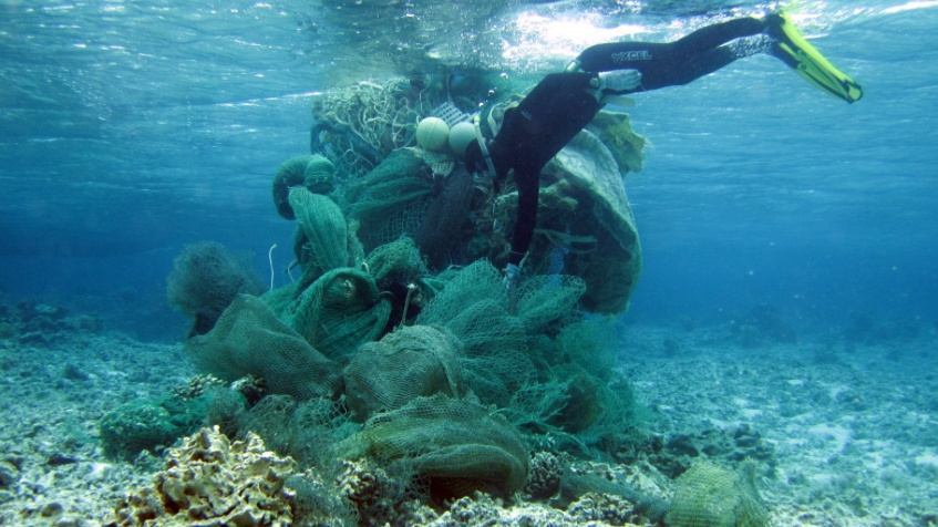 Careless activities like abandoned fishing gear or improper anchor placement causes considerable damage to corals. Photo credit: National Oceanic and Atmospheric Administration