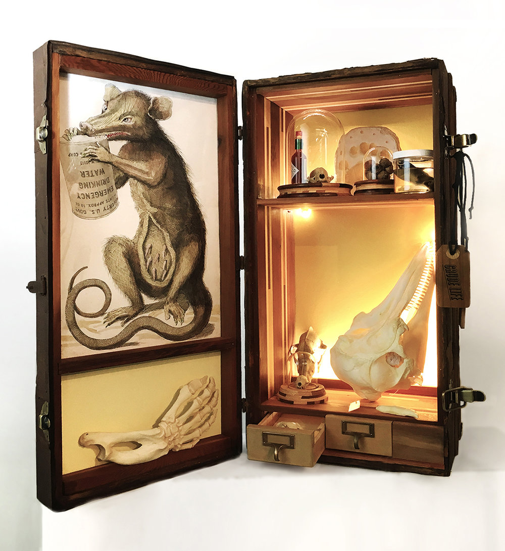 Crude Life Portable Biodiversity Museum for the Gulf of Mexico (Mammal Gallery), Sean Miller in collaboration with Brandon Ballengée, 2017