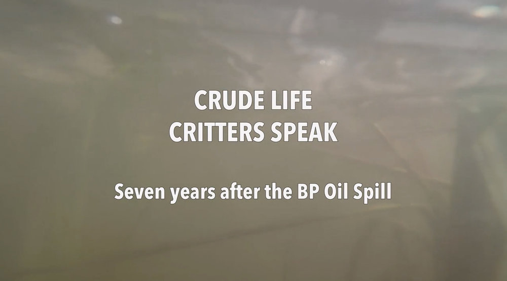 "Rachel Mayeri's video ""Crude Life Critters Speak Seven Years After the BP Oil Spill"""