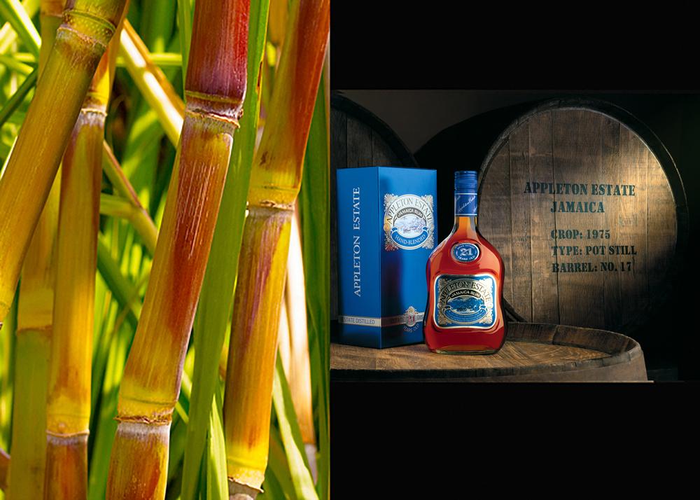 rum comp.jpg