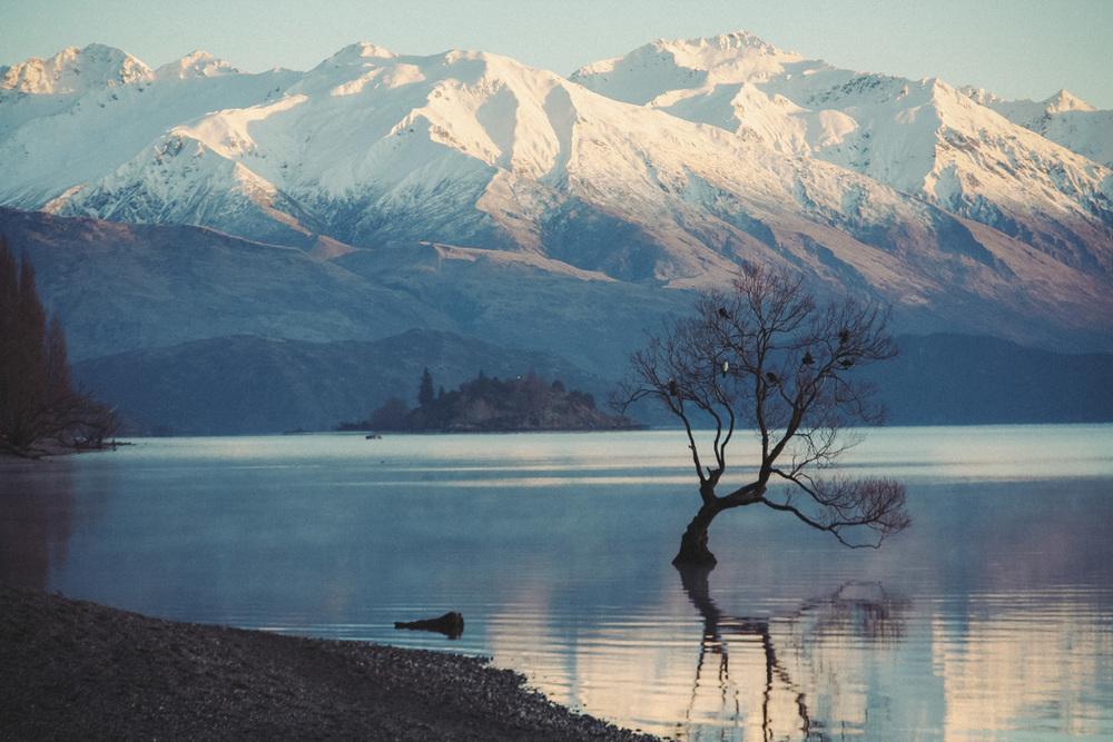 JB-NZ-10.jpg