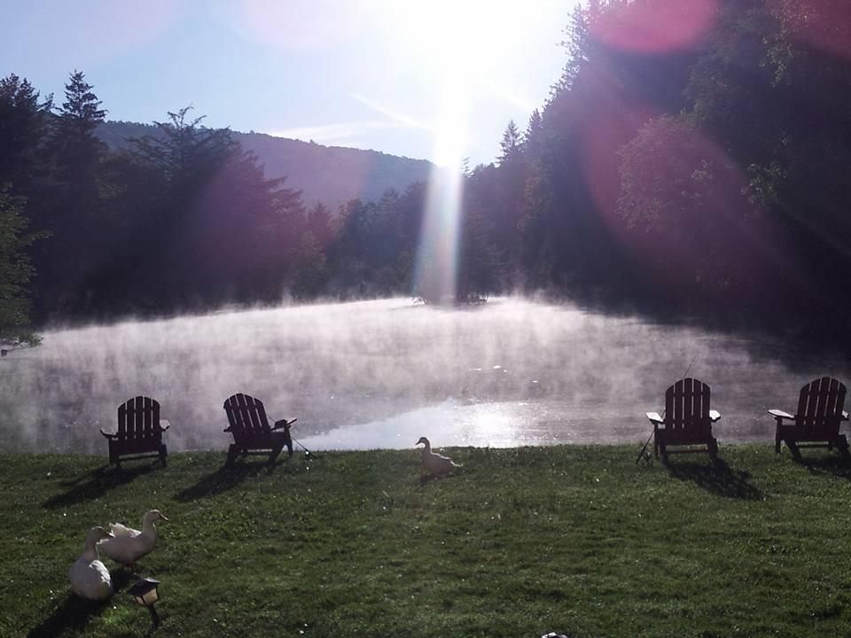 Copy of pond in morning.jpg