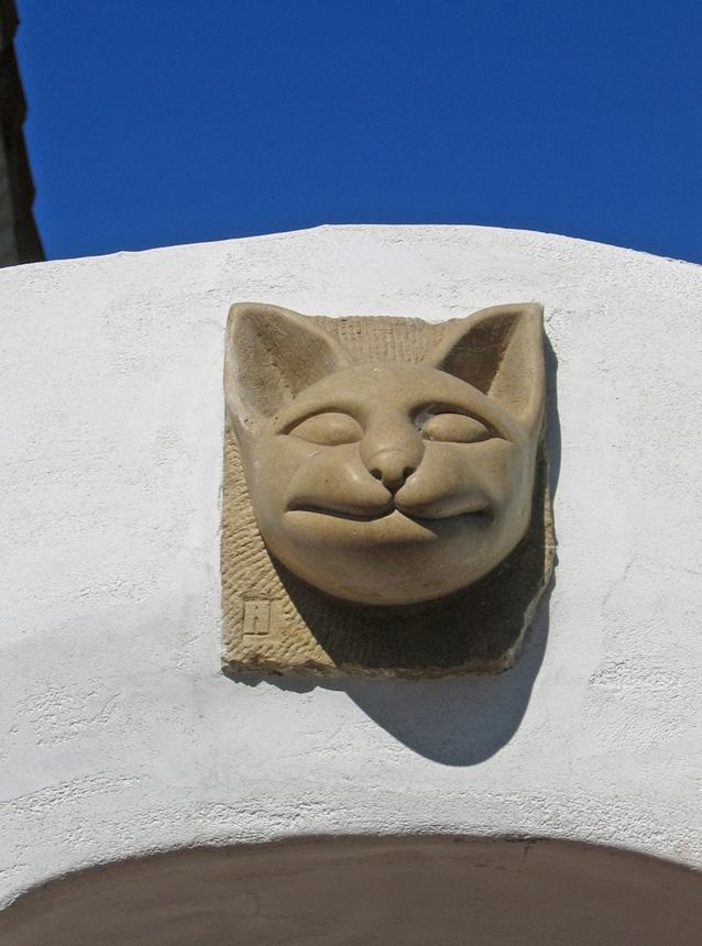 Cota-Street-Studios-Cat.jpg