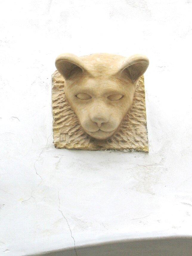 Cota-Street-Studios-Lion.jpg