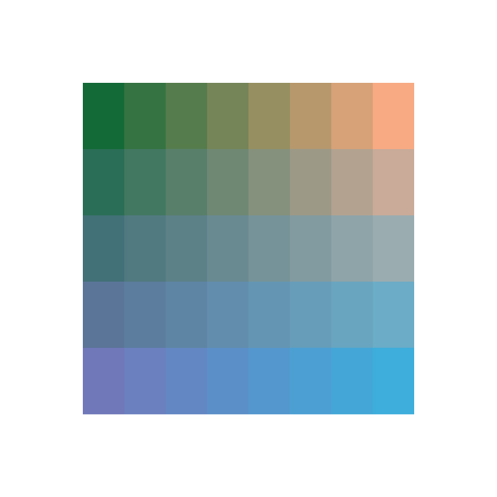 color palette 40