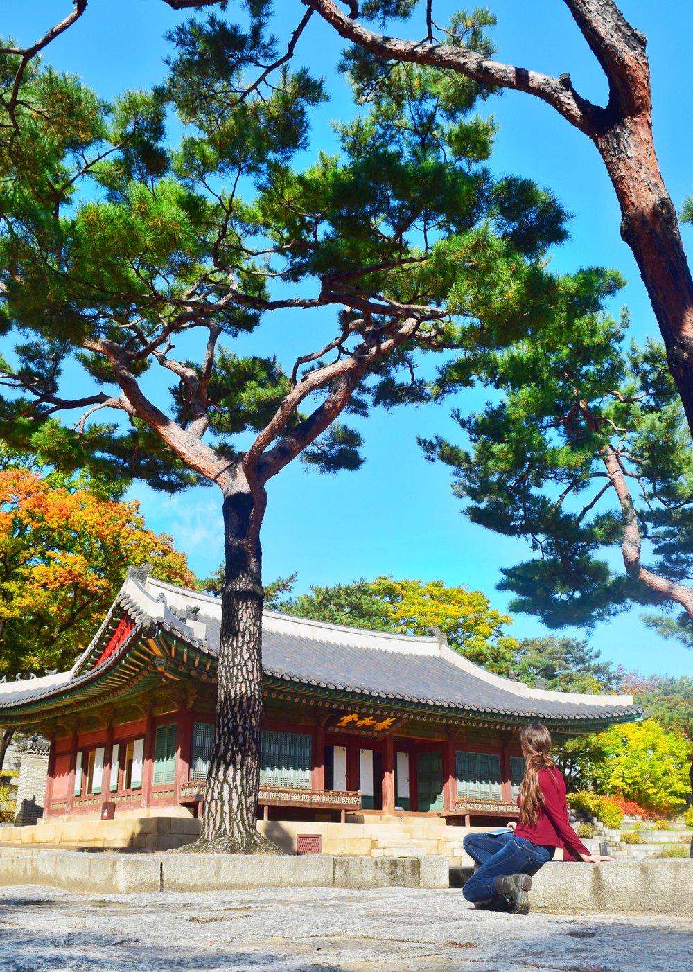 Seoul-Palace.JPG