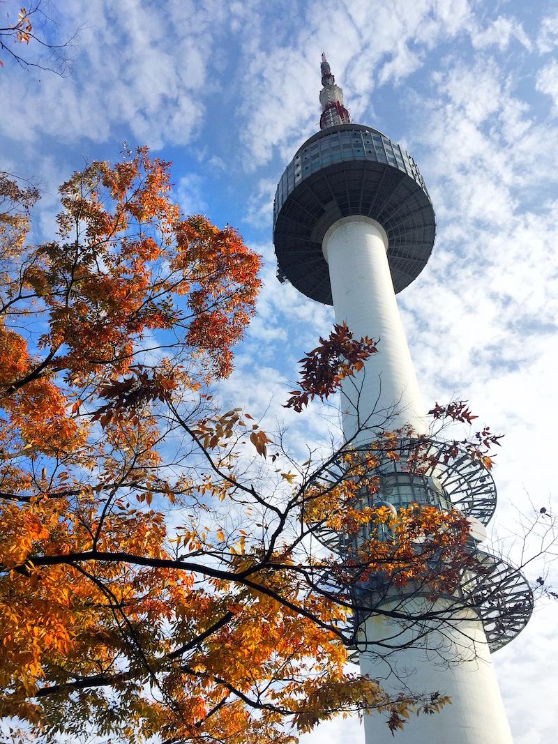 Seoul-Plaza-fall.JPG