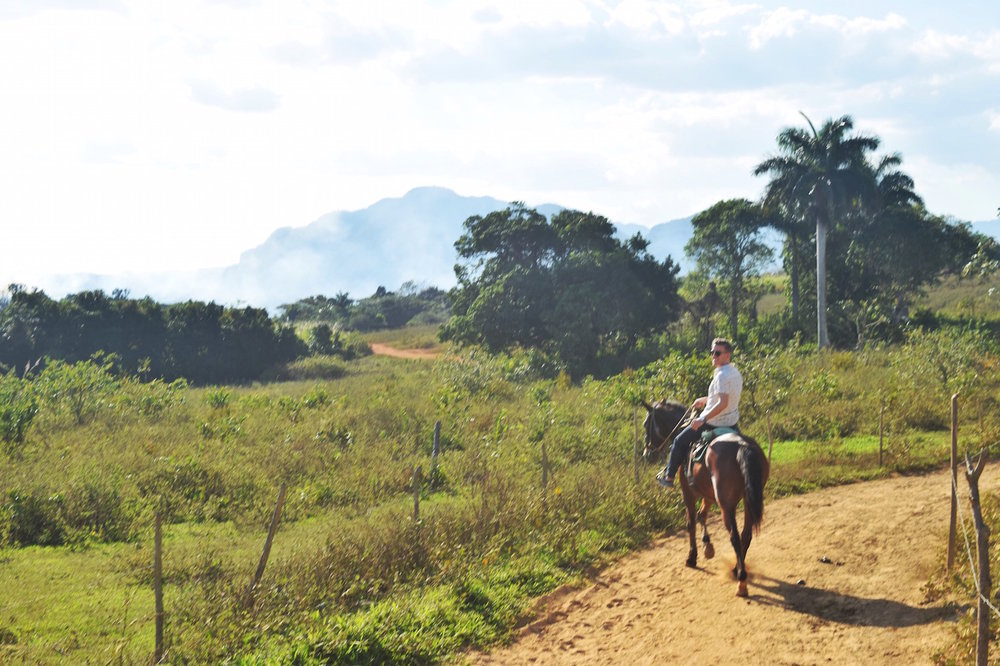 Take a day trip to Vinales, only 3 hours away from Havana Cuba. Enjoy horseback riding in Vinales or visit a tobacco farm!  -   Tessa Juliette | http://travelwheretonext.com/cuba
