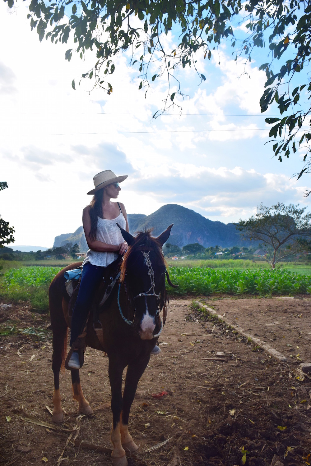 A great way to spend the day is horseback riding in Vinales - - Tessa Juliette | http://travelwheretonext.com/cuba