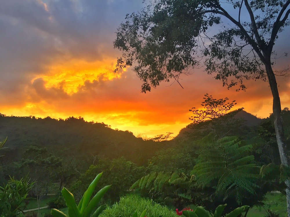 sunset in the jungles of costa rica.   One of the best things to do in Costa Rica.   Tessa Juliette | Travel Where to Next http://travelwheretonext.com