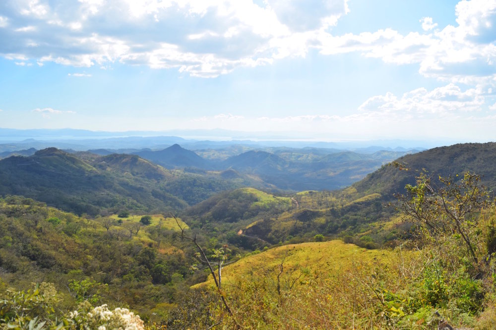 Driving to monteverde is gorgeous but scary. Dont be afraid!   One of the best things to do in Costa Rica.   Tessa Juliette | Travel Where to Next http://travelwheretonext.com
