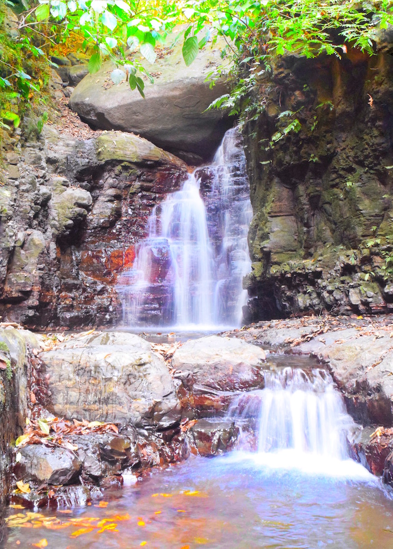 Waterfalls on property at Oxygen Jungle Villas