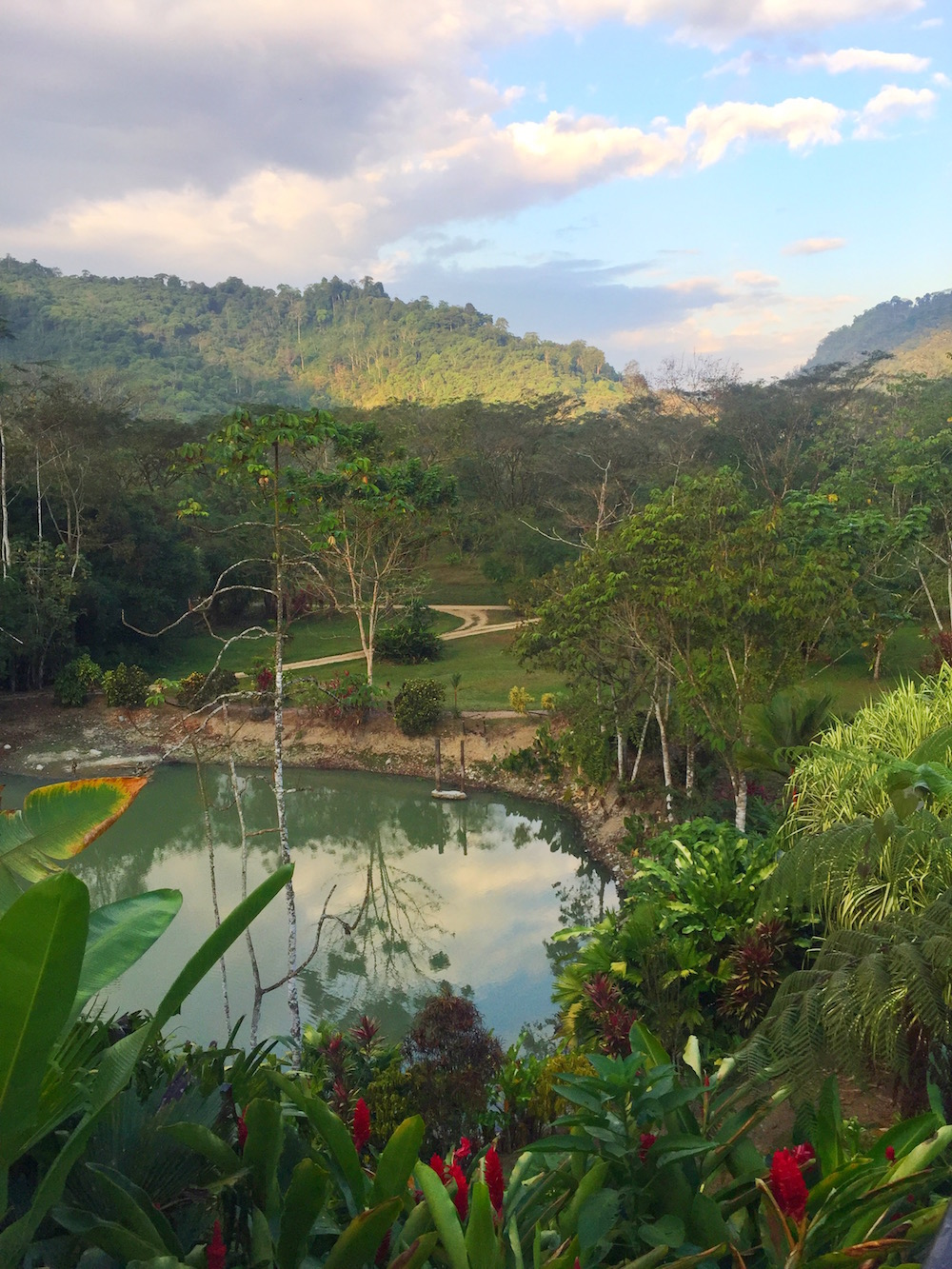 View from the Lodge at Rafiki Safari Lodge Costa Rica