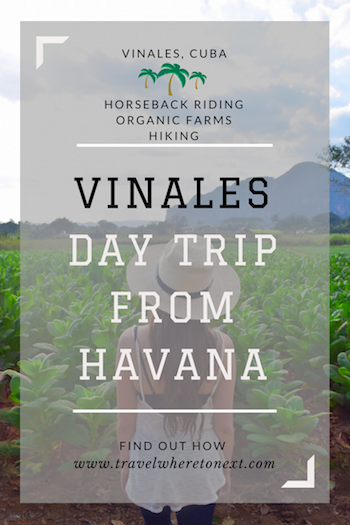 Great guide on how to Day trip to Vinales from Havana Cuba. Very easy to do. Click through to find out how. - Tessa Juliette | http://travelwheretonext.com/cuba
