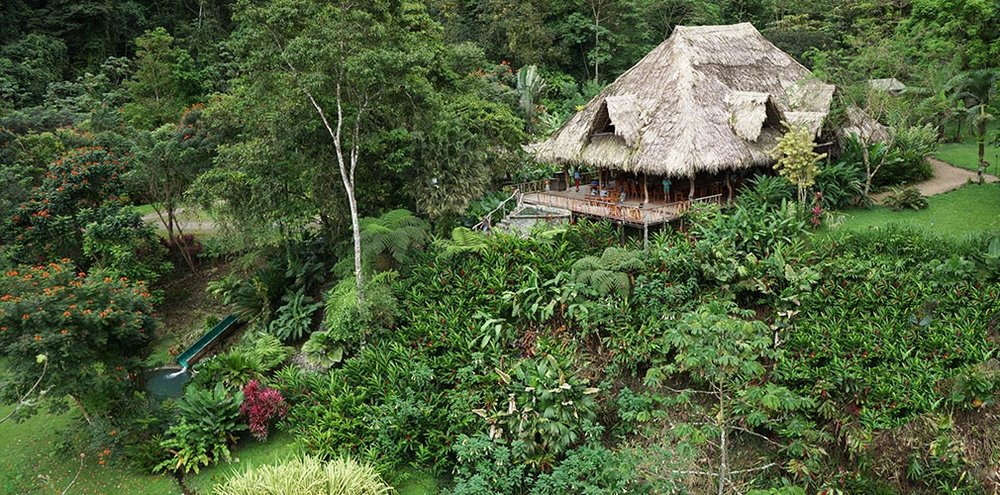 One of the best family vacation hotels in costa rica is Rafiki Safari Lodge in Costa Rica. It is one of the top hotels on trip advisor for Costa Rica and one of the best adventure vacations you can have in Costa rica.  Tessa Juliette - Travel Where to Next http://travelwheretonext.com