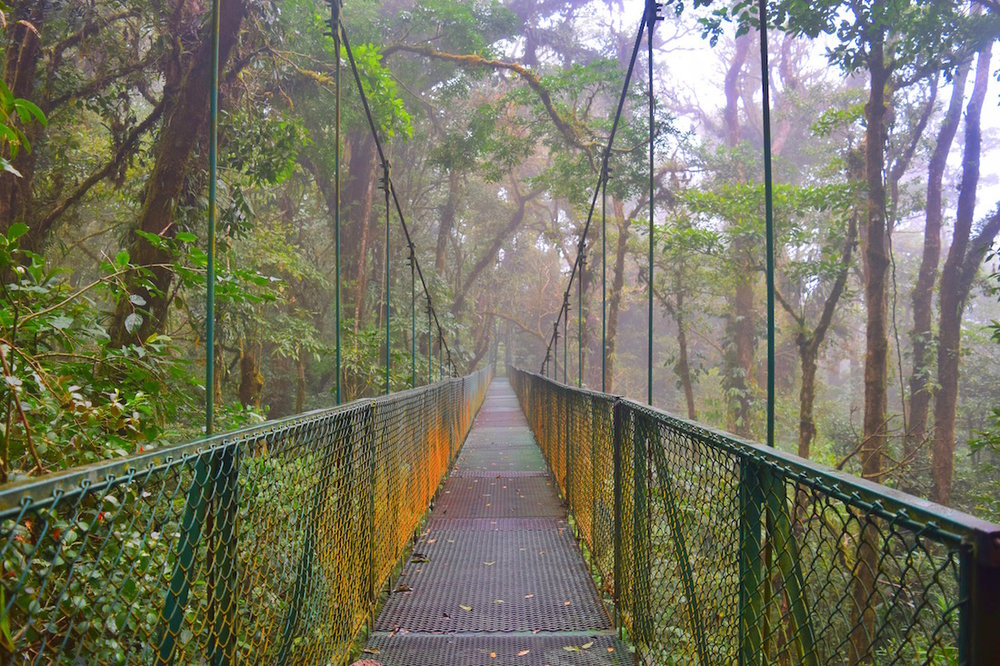 where to go for hanging bridges in Monteverde
