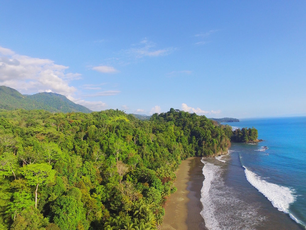 Jungle and Ocean view in Uvita Costa Rica