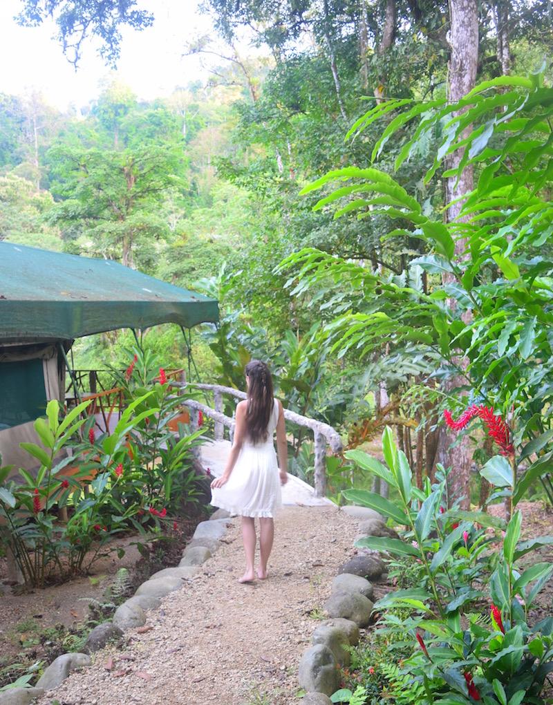 Rafiki-Safari-Lodge-tent-camping-jungle.jpg