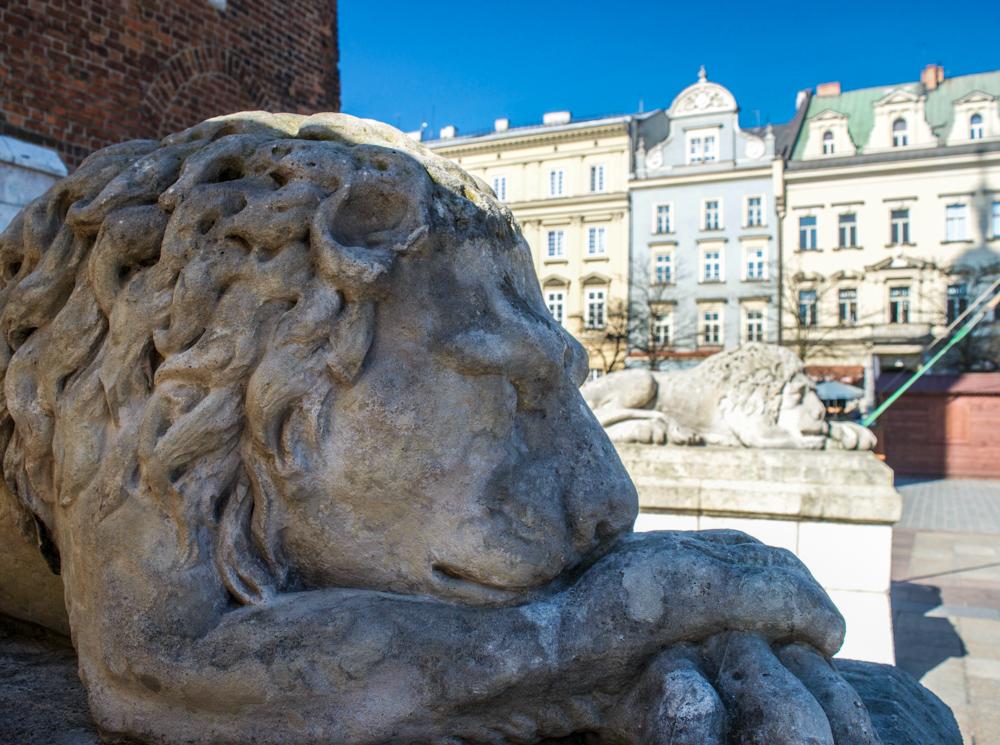 Town Hall Tower Krakow Poland
